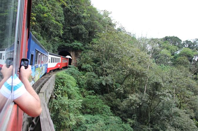 Curitiba City Tour and Rail Train Tour in Morretes