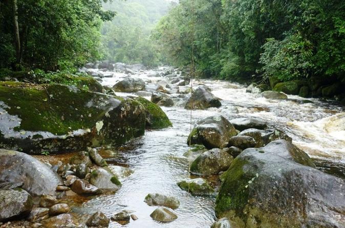 Private Itupava Trail Hiking Tour