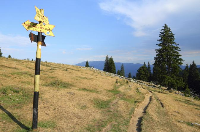 Small-Group Piatra Craiului National Park Hiking Tour from Brasov