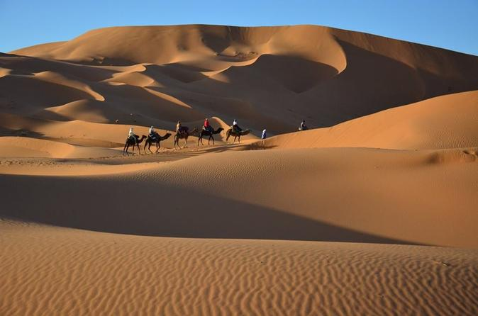 Overnight Tour from Marrakech to Zagora Including Desert Camp and Camel Trek