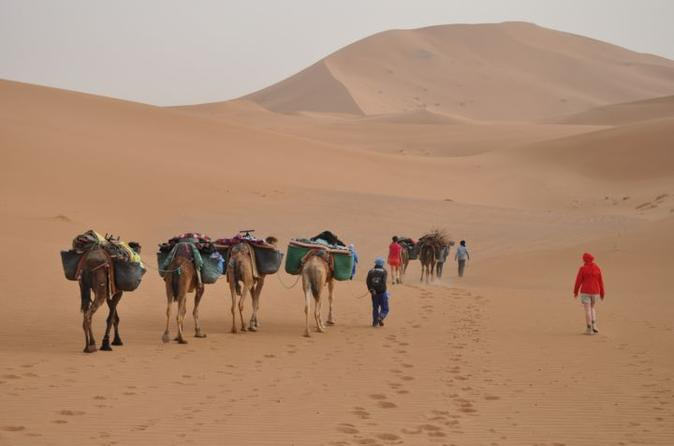Private Tour: 5-Night Sahara Explorer Tour from Marrakech with 4WD and Camel Trek