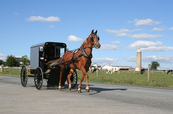 4 day amish experience from new hampshire in manchester 238423