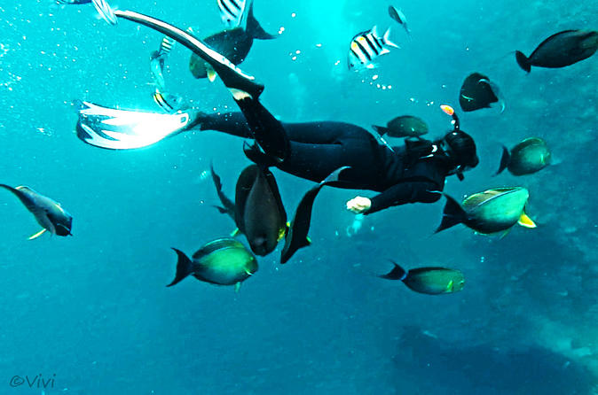 Snorkeling Package at Tulamben USAT Liberty Shipwreck