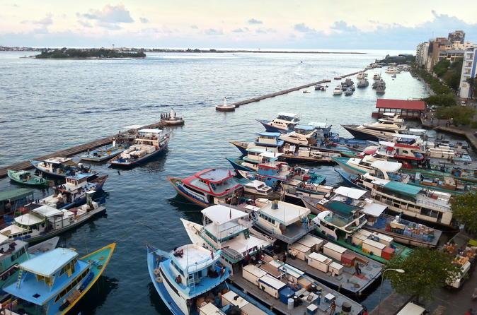 Half-Day Walking Tour of Malé