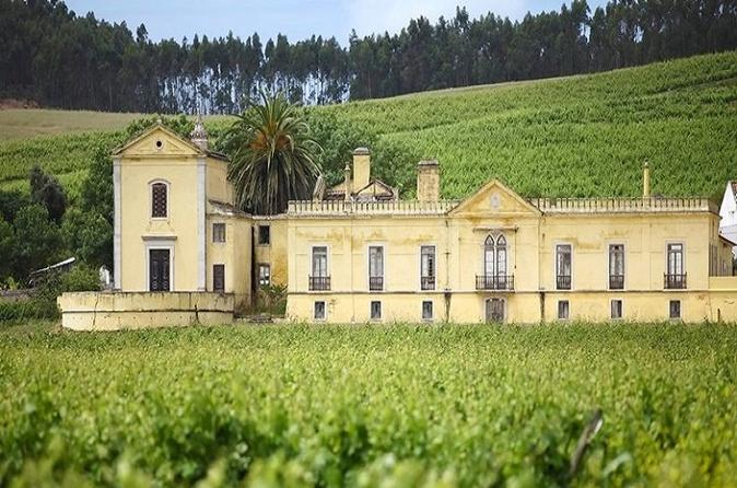 Private Quinta do Gradil Winery Tour from Lisbon