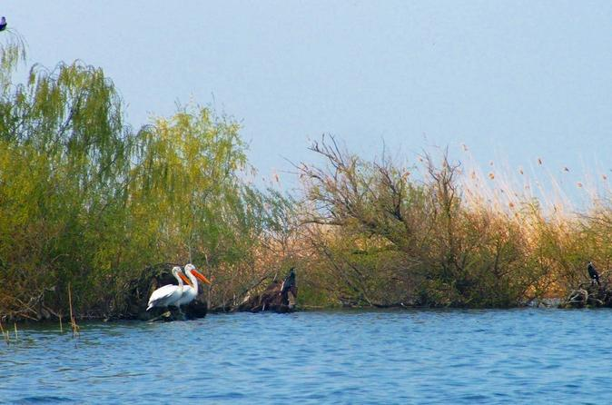 4 day danube delta tour stay at the fisherman s house in tulcea 227134