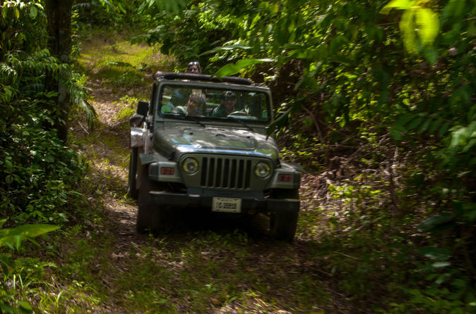 Jungle jeep adventure from belize city in belize city 263960