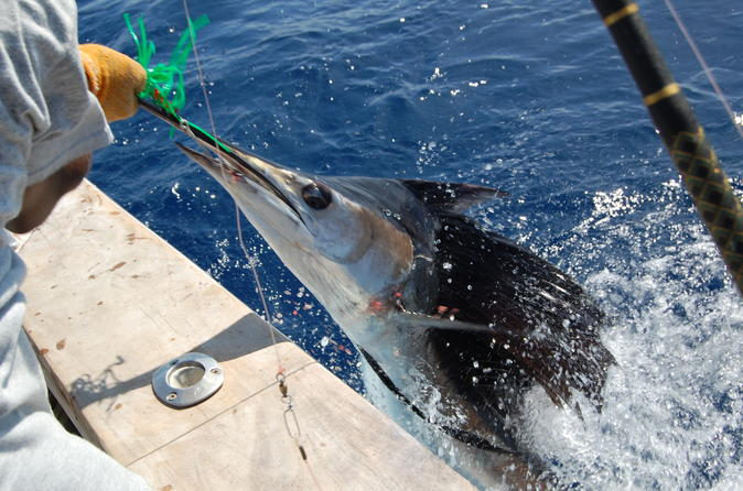 St Lucia Sports Fishing Adventure