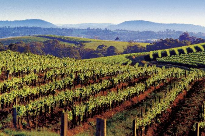 Day trip to Hunter Valley