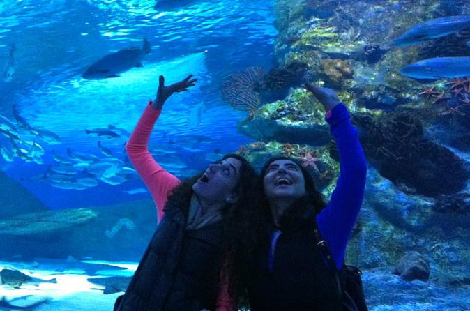 antalya aquarium with a short city tour and visit to lara waterfall