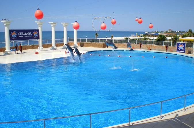 Dolphin Show at Sealanya from Side