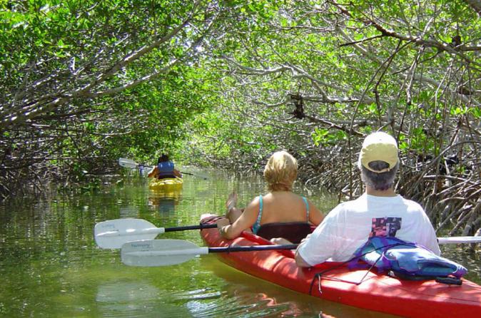 San Juan Bioluminescent Bay Kayak Adventure Tour from San Juan Puerto Rico, Caribbean