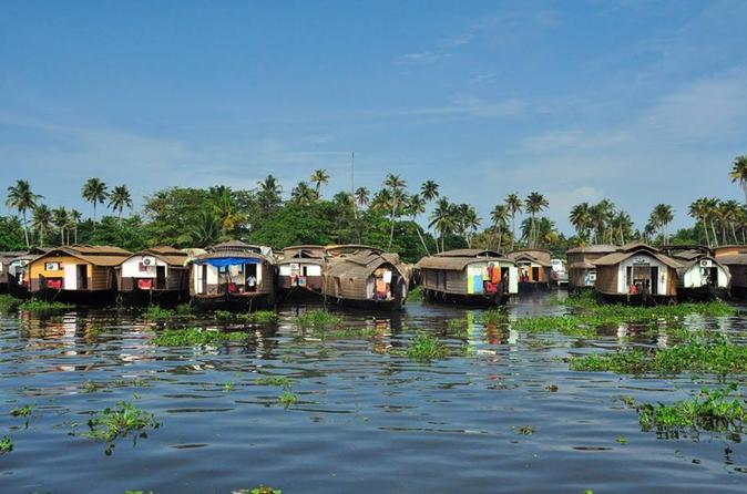 6-tägige private Tour: Periyar-Naturschutzgebiet und Backwaters-Hausboottour in Kerala
