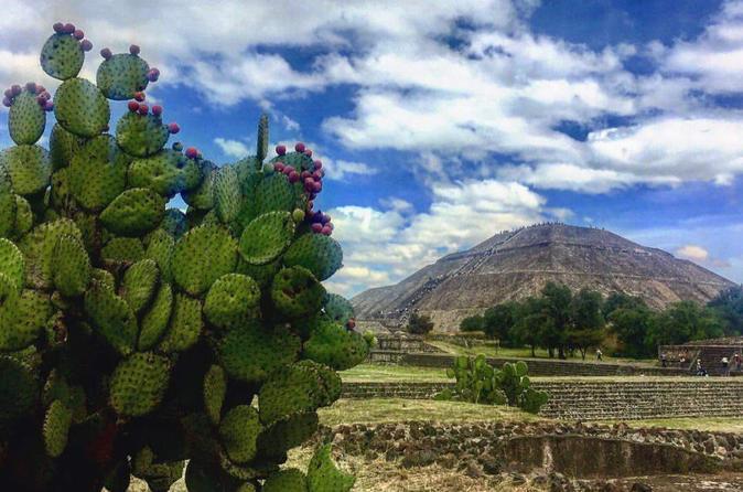 Excursão arqueológica particular por Teotihuacan e Tula saindo da Cidade do México