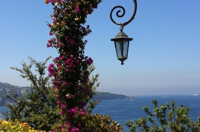 Amalfi, Positano and Sorrento Full Day Excursion from Naples