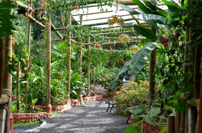 Mindo's Butterfly House - Quito