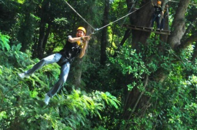 3-Hour Zip Line Jungle Adventure from Phuket