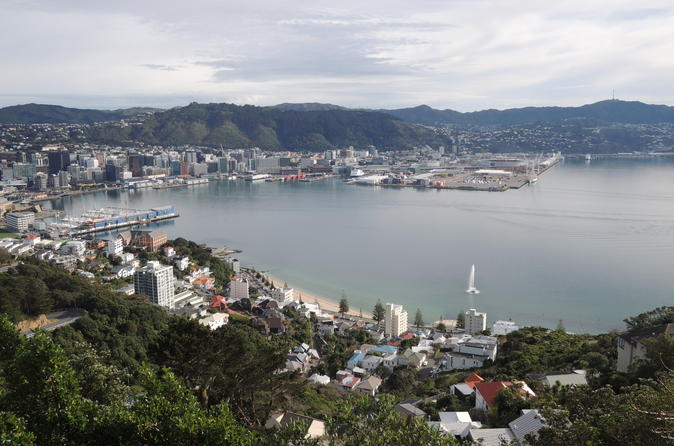 Wellington City Scenic Tour