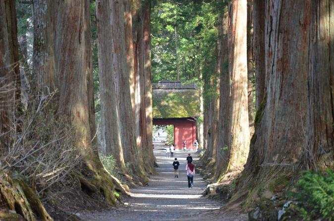 nagano full day togakushi nature hike and ninja tour in japan asia