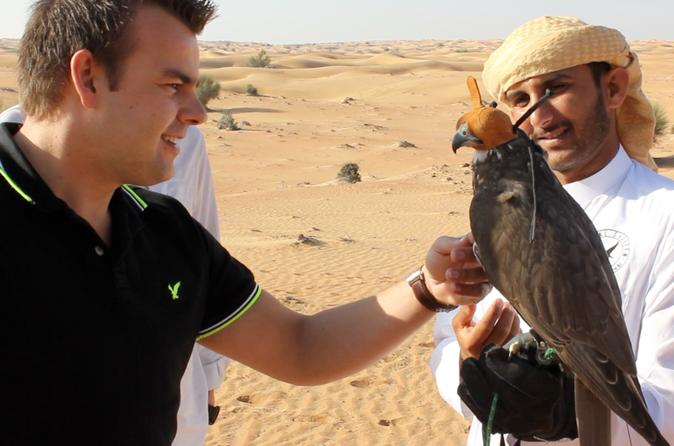 Private Tour: Dubai Falconry Experience with Wildlife Drive and Optional Breakfast