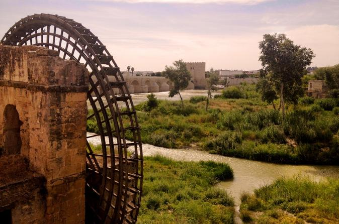 Private Day Tour from Seville to Granada with Guided Visit of Cordoba