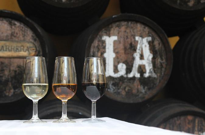 Wine Tour to Sanlucar de Barrameda from Seville with Optional Horse Riding
