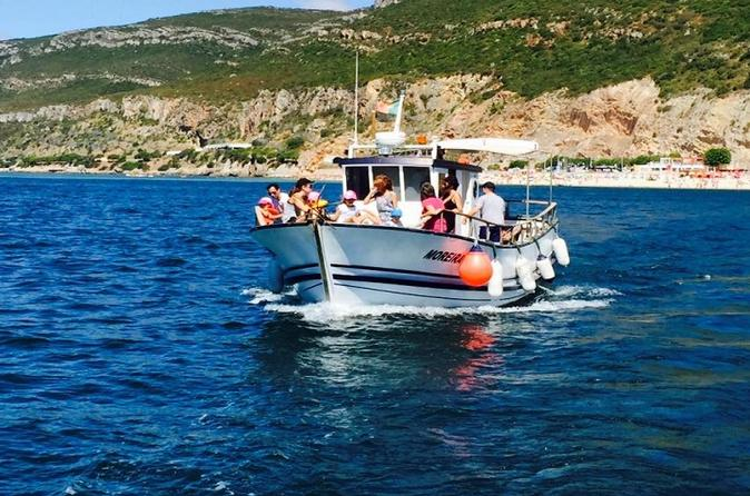Dolphin Watching Experience and Trawler Full Day Tour with Lunch