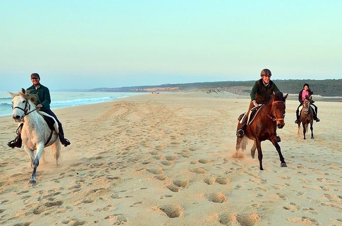 WONDERES OF ARRABIDA  3 DAYS OF UNFORGETABLE  EXPERIENCES WITH HORSEBACK RIDING