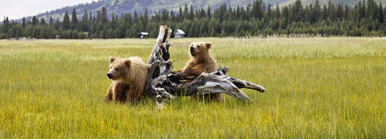 Alaska, Western USA