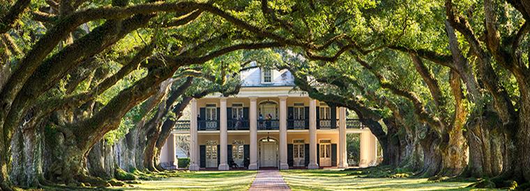 Discover Louisiana