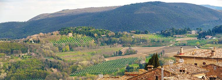 Montepulciano, Italy Tours & Travel