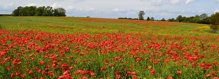 South West England, England